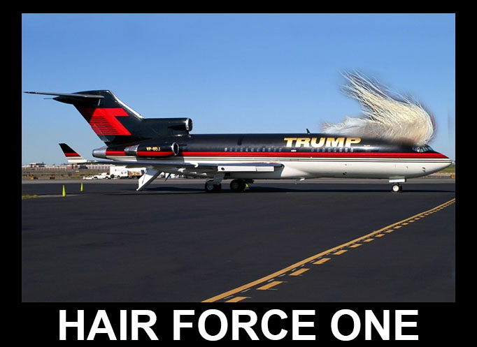 TRUMP hair force one