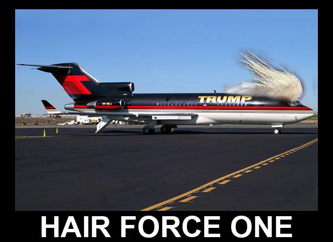 TRUMP hair force one